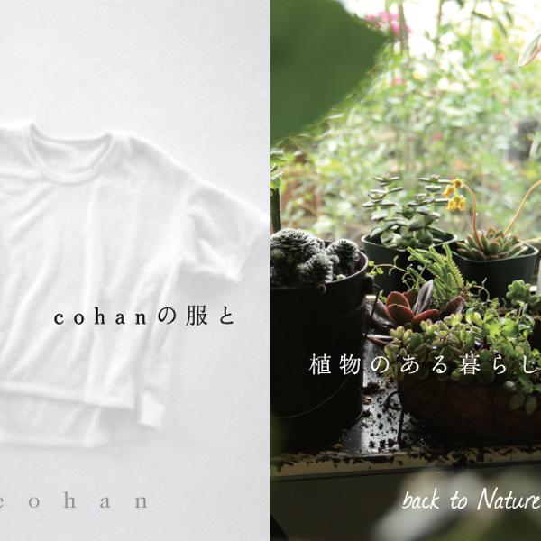 cohan の服と植物のある暮らし