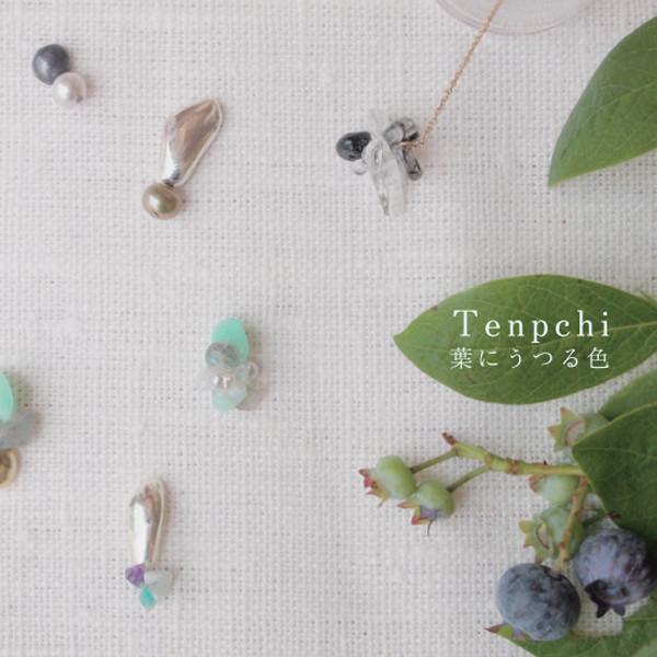Tenpchi 葉にうつる色