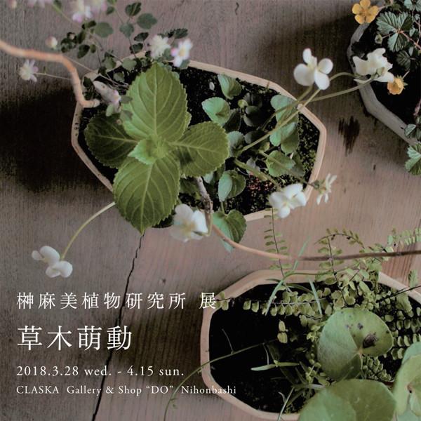 榊麻美植物研究所展<br>草木萌動