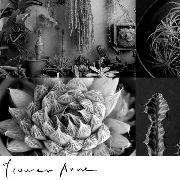Flower Arne POP UP