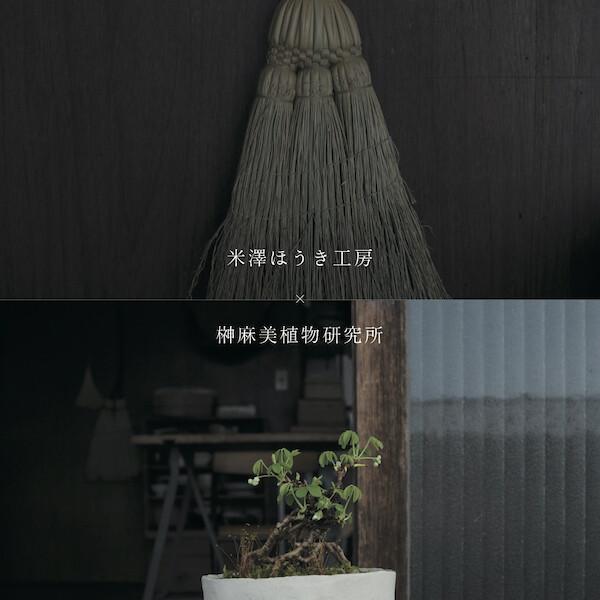 米澤ほうき工房 × 榊麻美植物研究所