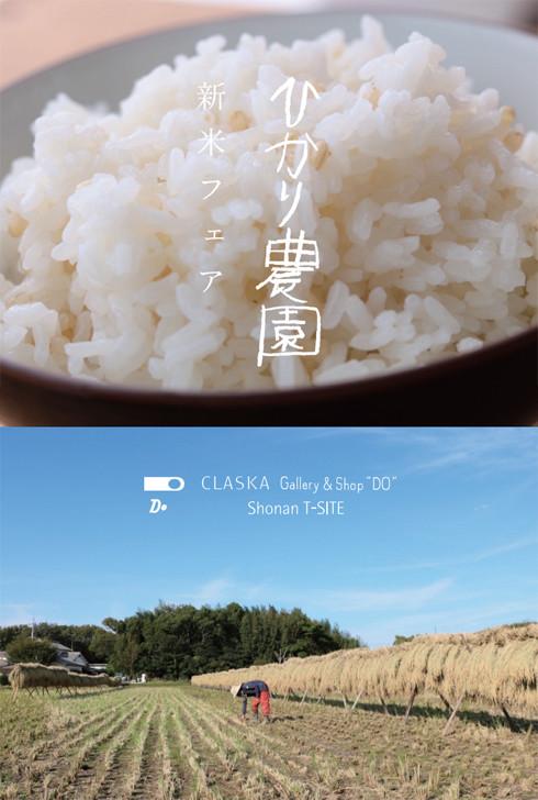 hikari_main.jpg