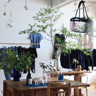 「cohan の服と植物のある暮らし」 9月23日(水祝) まで